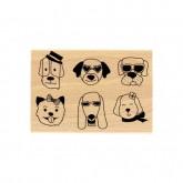 Des chiens