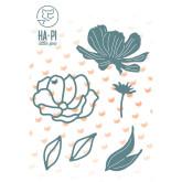 Die «Fleurs délicates»